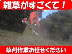 画像1: 草刈・草取り