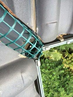 画像5: 鳥の巣駆除 害鳥対策