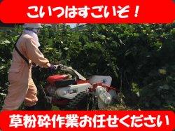 画像1: 草刈・雑草粉砕【 ハンマーナイフモア OREC 】